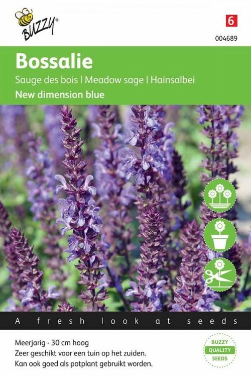 Meelsalie (Salvia) New Dimension Blue