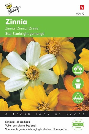 Zinnia Star Starbright