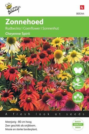 Zonnehoed (Echinacea Rudbeckia) Cheyenne Spirit
