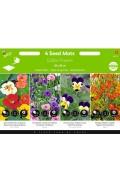 Edible Flowers Seedmat 4 x 20x20cm