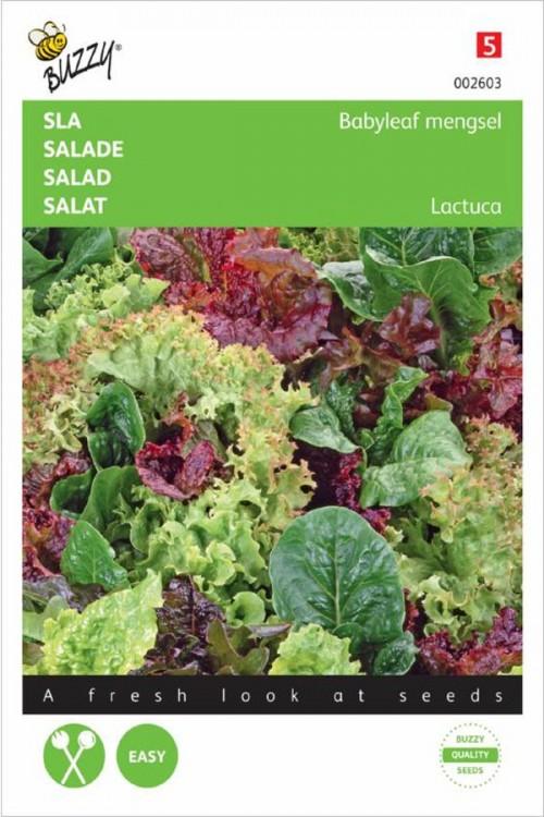 Lettuce Babyleaf Lettuce mix