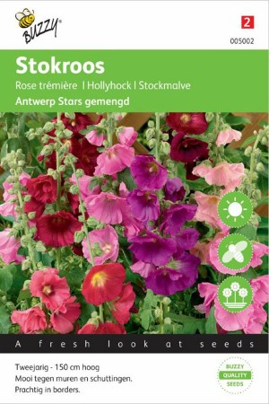 Hollyhock (Alcea Rosea) Antwerp Stars mixed Hollyhock