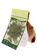 Rose of Jericho 3x Small