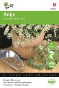 Anijsplant - Anijs zaden