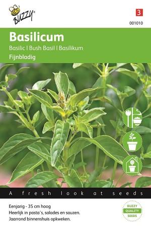 Fijnbladige Basilicum -...