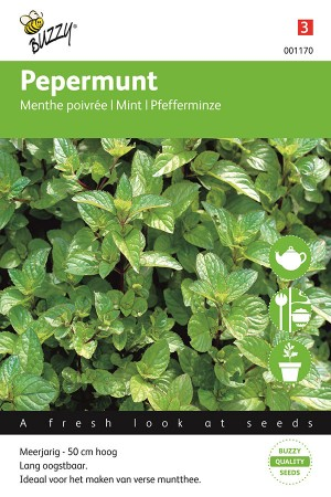 Mint Peppermint seeds