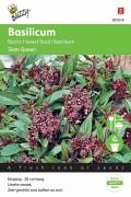 Siam Queen Basilicum zaden