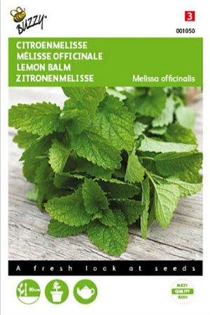 Melissa Lemon Balm seeds