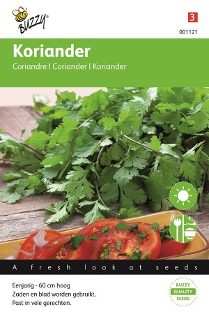 Coriander - Chinese Parsley