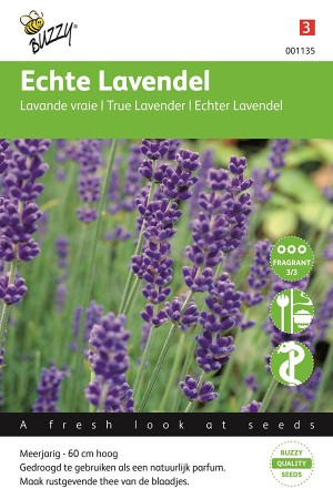 Engelse Lavendel - Echte...