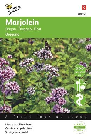 Oregano - Wilde Marjolein
