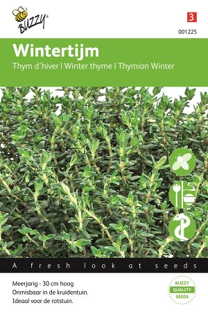 Winter Thyme seeds