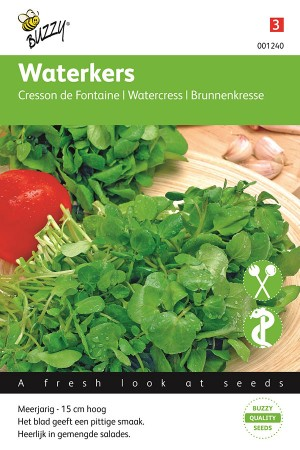 Common Watercress