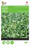 Avantgarde Winter Endive seeds