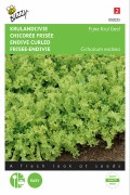 White Fine-curled Endive seeds