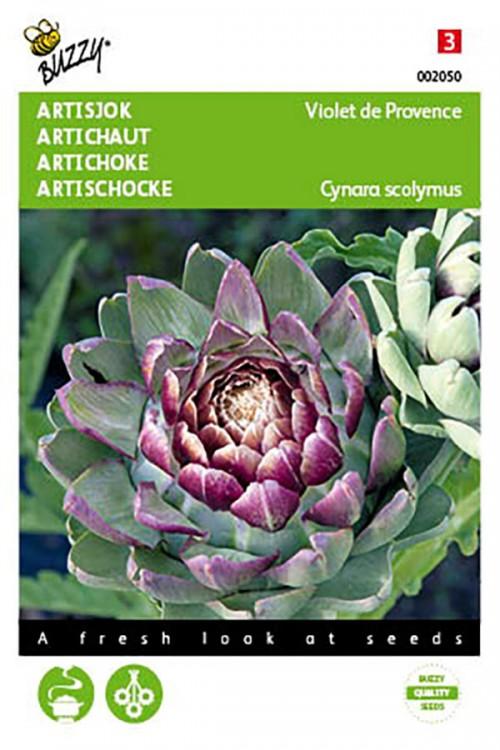 Violet de Provence Artisjok zaden