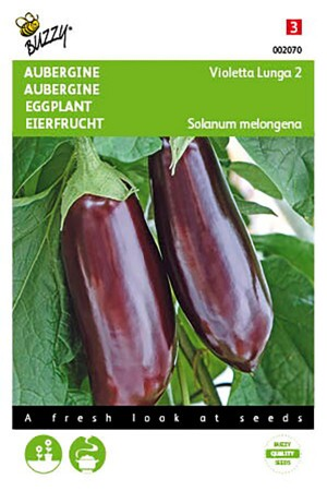 Early Long Purple - Eggplant