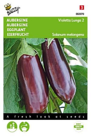 Early Long Purple - Eggplant