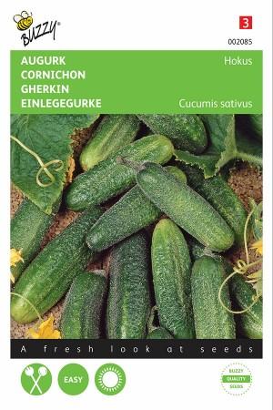 Hokus - Gherkin