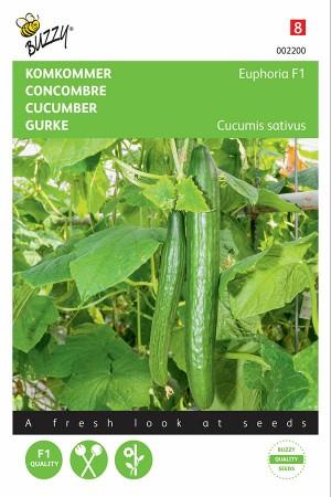 Euphoria F1 - Cucumber