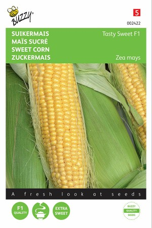 Tasty Sweet F1 - Sweetcorn
