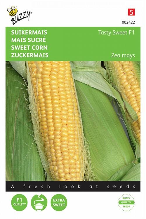 Tasty Sweet F1 - Sweetcorn