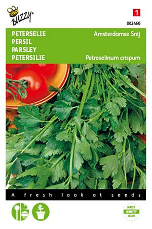 Amsterdam Parsley seeds
