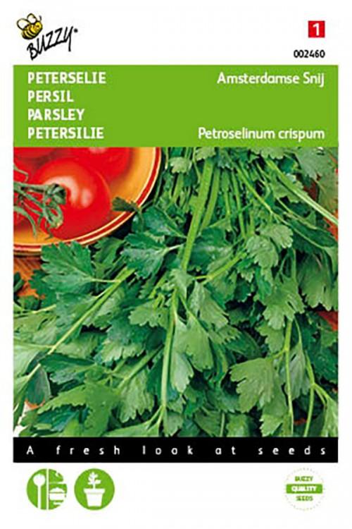Amsterdam Parsley seeds