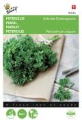 Curled dark green Parsley seeds