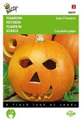 Jack O'Lantern Halloween pompoen zaden