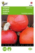Oranje Zon - Uchiki Kuri pompoen zaden