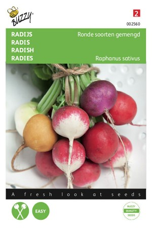 Mixed colours of round radish