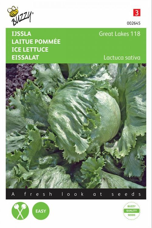Iceberg Geat Lakes 118