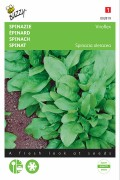 Winter giants spinach seeds