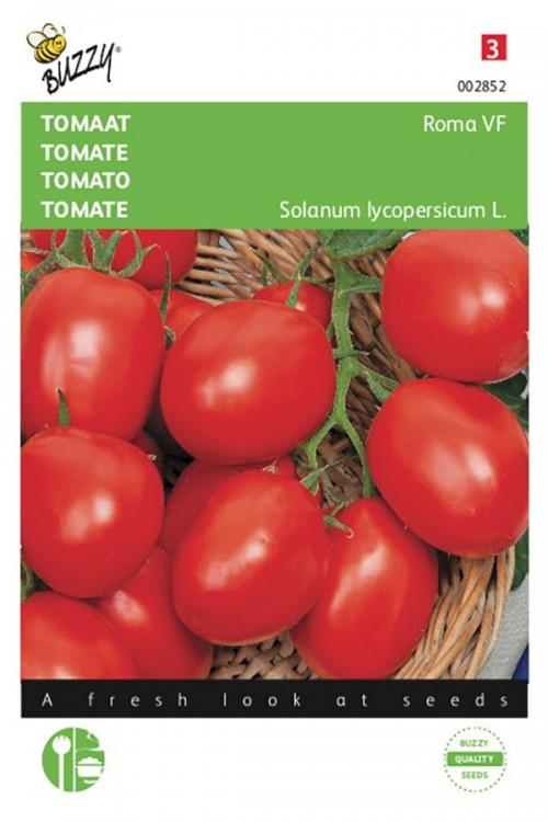 Roma VF pomodori tomatenzaden