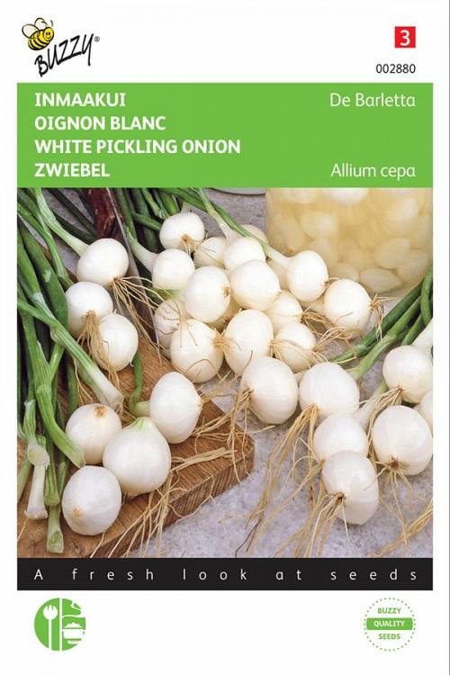 White pickling onion De Barletta seeds