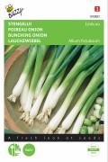 Ishikura bunching onion seeds