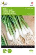 White Lisbon bunching onion