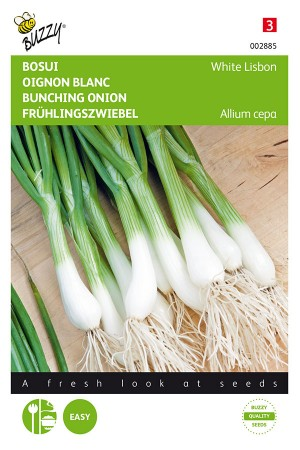 White Lisbon bunching onion