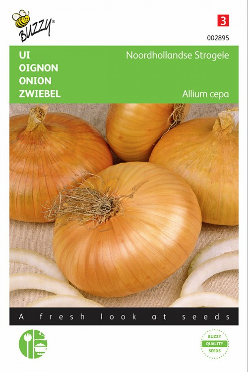 Yellow Flat Dutch onion seeds