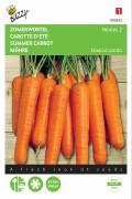 Nantes 2 - Zomerwortel