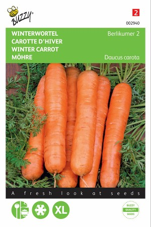 Berlicum 2 - Winter Carrot