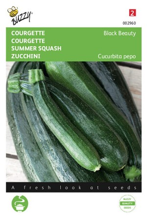 Black Beauty Courgette