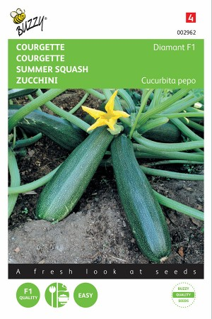 Diamond F1 - Courgette