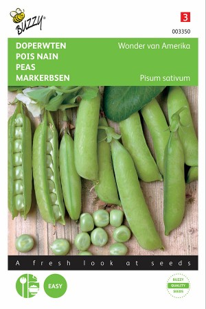 American Wonder low green peas