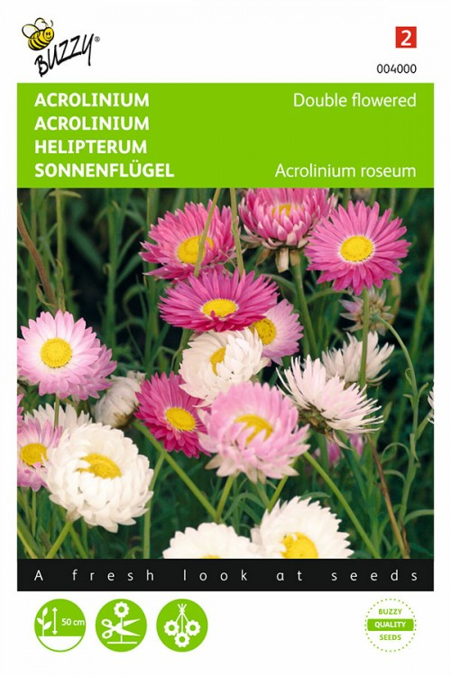 Acroclinium Dubbelbloemig Strobloem gemengd