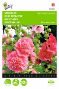 Summer Carnival - Double Hollyhock seeds