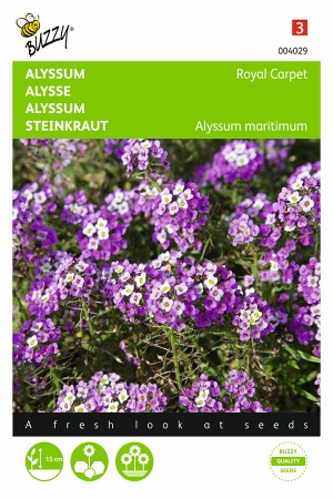 Royal Carpet Alyssum zaden