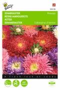 Gemengde kleuren Princess - Zomeraster zaden