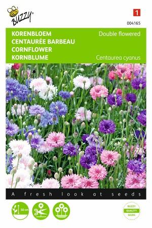 Dubbelbloemig Centaurea...